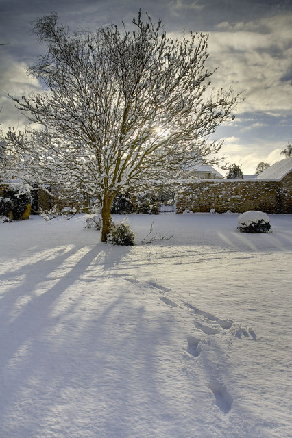 Warsop's first snow of the 2010 winter