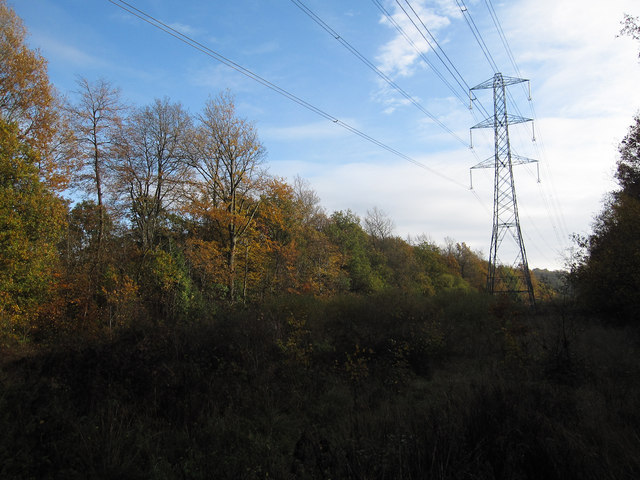 Electricity cables through Great Oaks