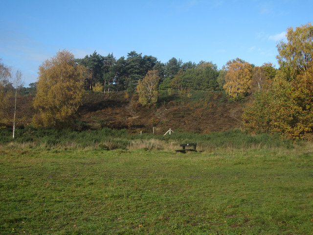 Oxshott Heath