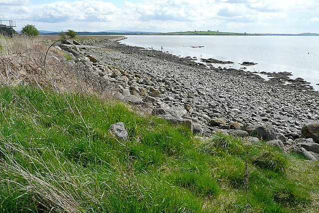River Fergus estuary