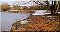 J4774 : Frozen duck ponds, Newtownards (5) by Albert Bridge