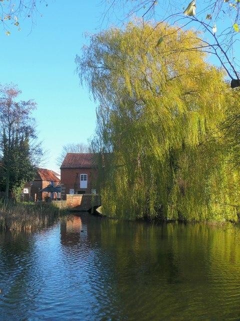River Slea and Cogglesford Mill
