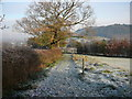 SJ5074 : Frosty morning on North Cheshire Way near Alvanley by Colin Park