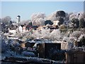 SP2972 : Frost at Odibourne allotments by John Brightley