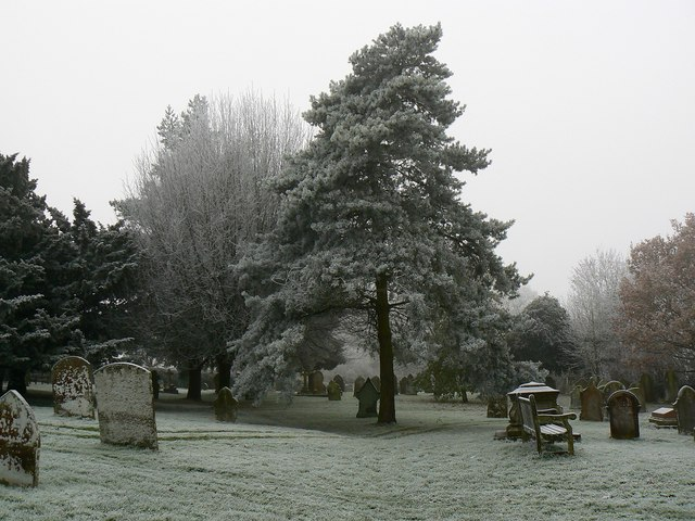 Trees in the churchyard, Parish Church of St John and St Helen, Church Hill, Wroughton, Swindon