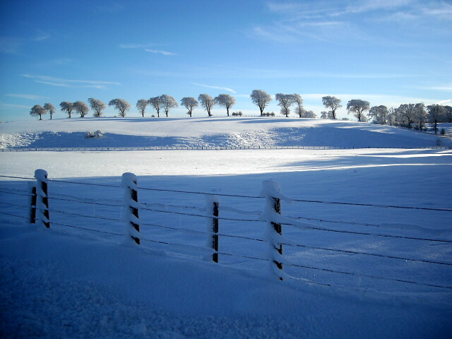 Snow Covered Fields Beside Millwell Road