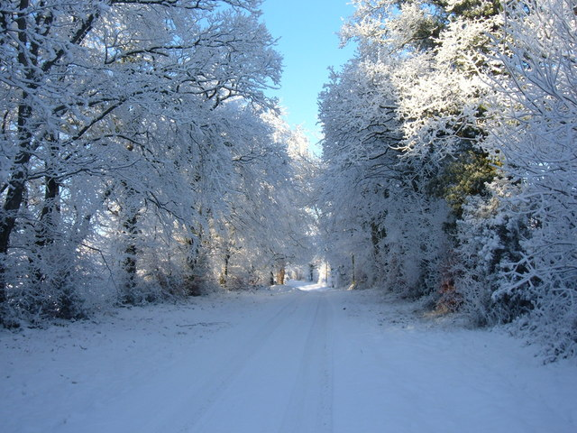 The Avenue to Freame Mount in snow