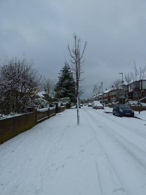 A snowy Grant Road (3)