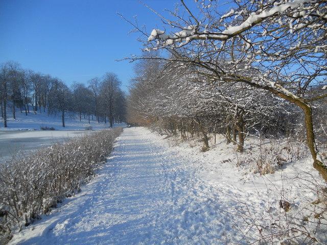 Sunny snow path