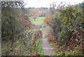 TQ6410 : Steps, 1066 Country Walk, Herstmonceux Castle grounds by Nigel Chadwick