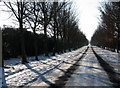 TL5154 : Babraham Road on Christmas Day by John Sutton