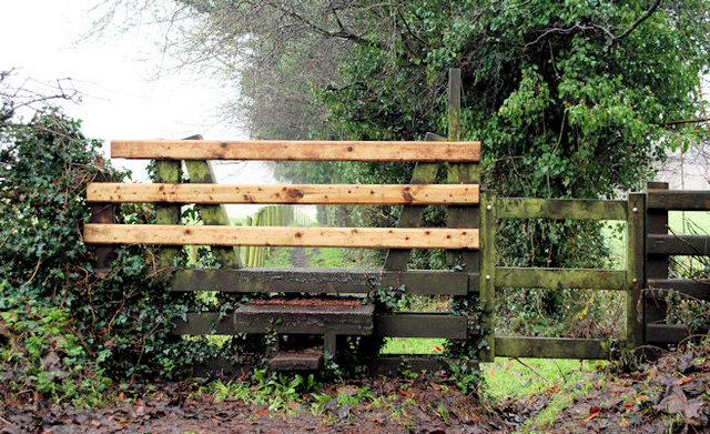 Closed stile, Ballynahatty, Belfast