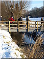 TL1135 : Footbridge by Dennis simpson