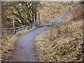 SD7106 : Path to Freshfield Avenue by David Dixon