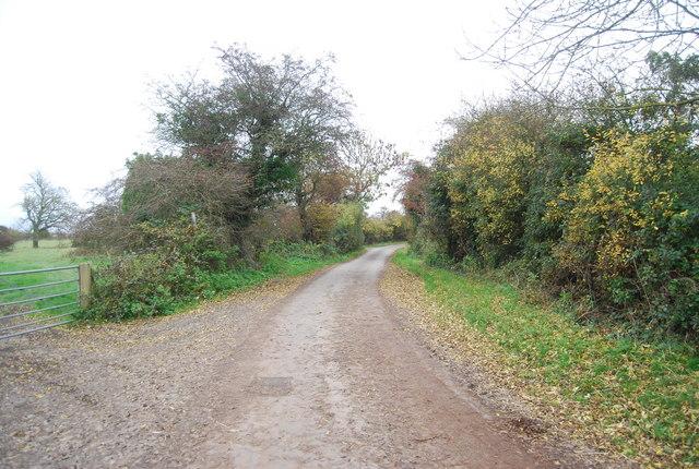 Rickney Lane