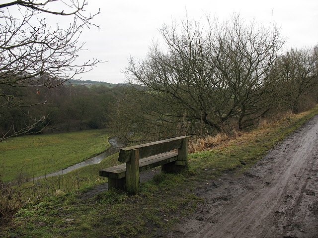 Muddy track with wooden bench