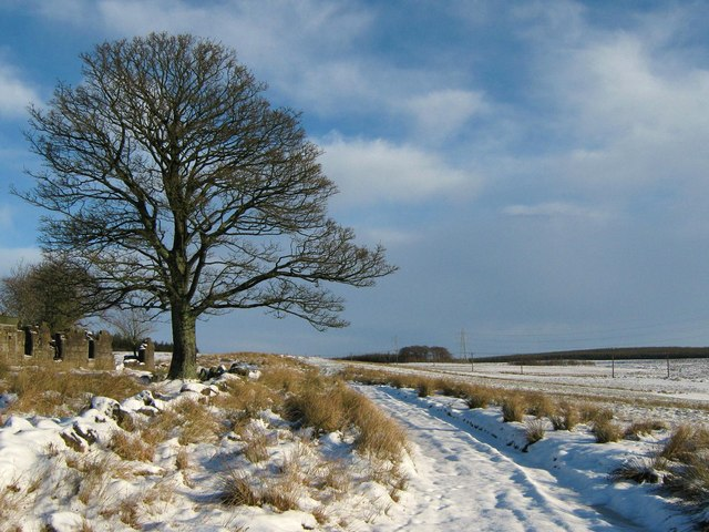 Snowy Track to Lochgreen at Righead Farm