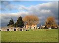 SU6195 : Ewe Farm : Week 2