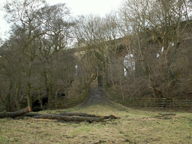 The track to Romtickle viaduct  and Cheese Bottom