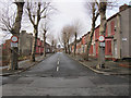 SJ3688 : Wynnstay Street, Toxteth by John S Turner