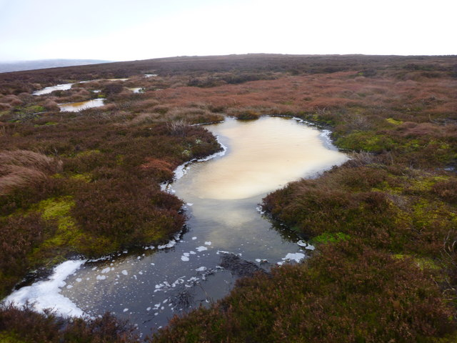 Thawing pool on Eggleston Common tundra