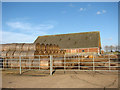 TG3606 : Straw bales by cattle shed at Wood Lane Farm, Buckenham by Evelyn Simak
