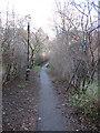 TQ3075 : Footpath to Chelsham Road by Stephen Craven