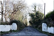 T1858 : Farm Entrance by kevin higgins