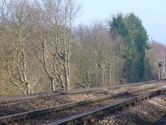 Railway Line by Flexford