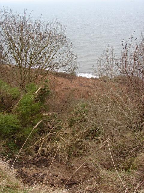 Down Beast Cliff