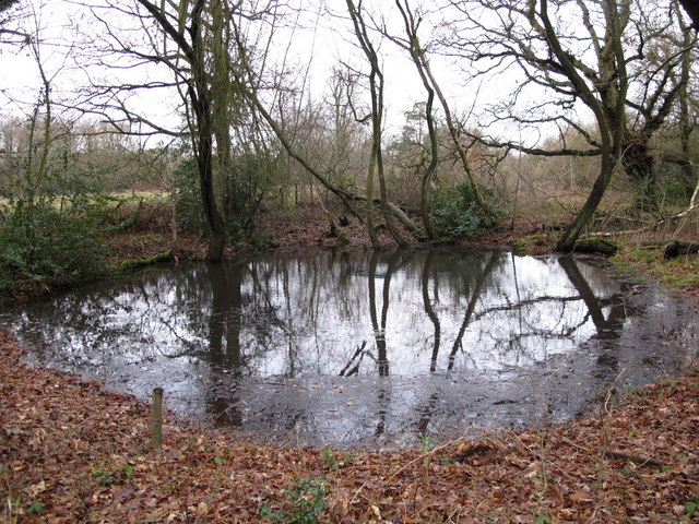 Pond at the southern end of Lake Wood