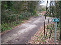SW6437 : Public bridleway on the edge of Pendarves Wood by Rod Allday