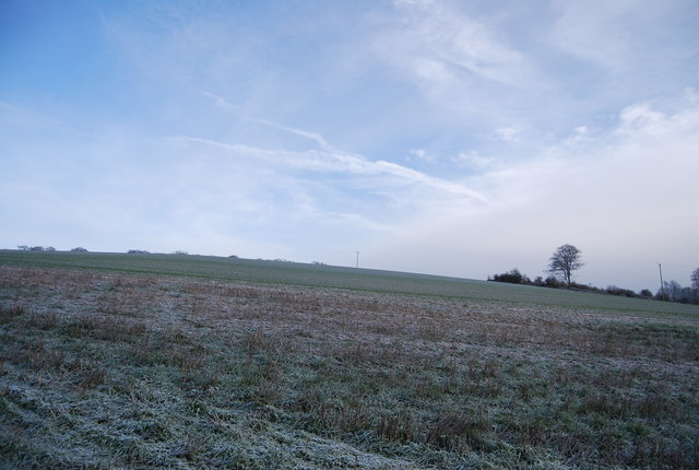 Field on the North Downs