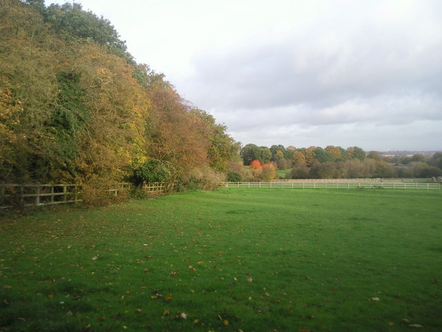 Autumn colours near Belmont Lane, Chislehurst