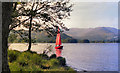 NY3701 : Windermere by David Dixon