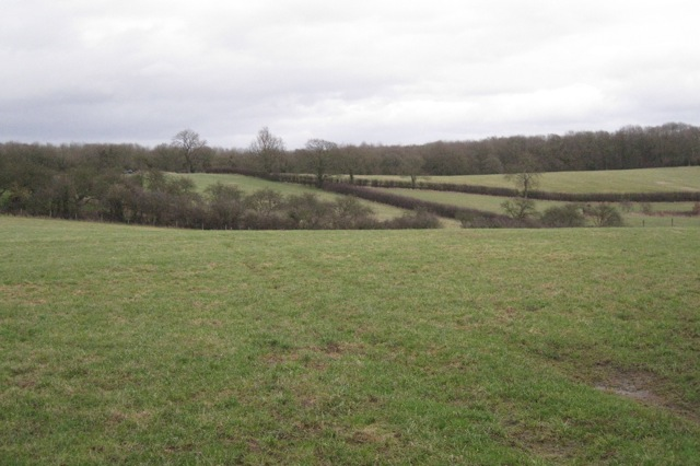 Bearley Bushes beyond fields
