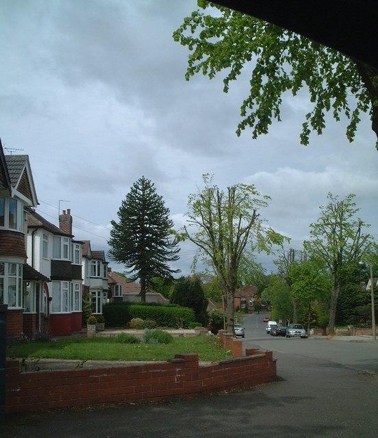 Delrene Road