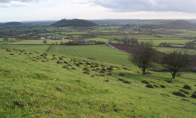 Looking towards Dundon Beacon from Collard Hill.