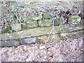 SJ5270 : Cut Mark, Longley Lane, Delamere by VBForever