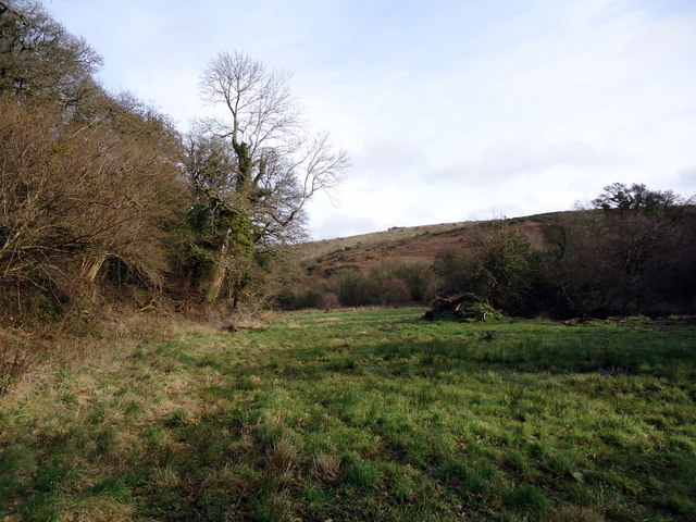 Valley of the Goodwick Brook