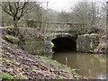 SD9301 : River Medlock: Fenny Field Bridge by David Dixon