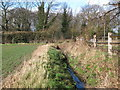 TQ4266 : Drain on Bromley Common east of Princes Plain, BR2 (8) by Mike Quinn