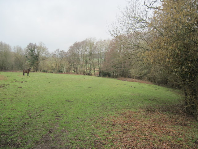 Field beside Ely link road (A4232)