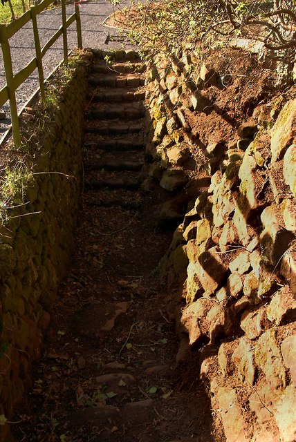 Steps to the Ice House