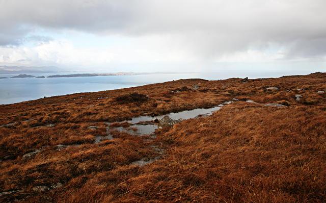 Boggy sandstone moorland