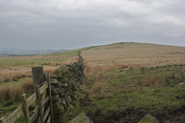 Drystone Wall to Reva Hill