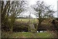TQ7476 : Footbridge, Saxon Shore way by N Chadwick