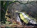 NS2471 : Greenock Cut in Shielhill Glen by Thomas Nugent