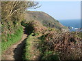 SX2150 : Coast path near Dennisball by Derek Harper
