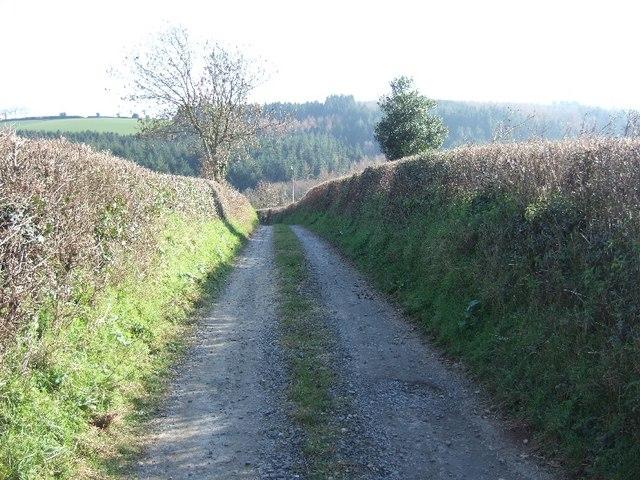 Track to Hayne Farm